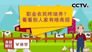 《央视财经V讲堂》 20191203 乡村要振兴需要新型职业农民,三种培养模式可借鉴!| CCTV财经