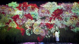 Proliferating Immense Life