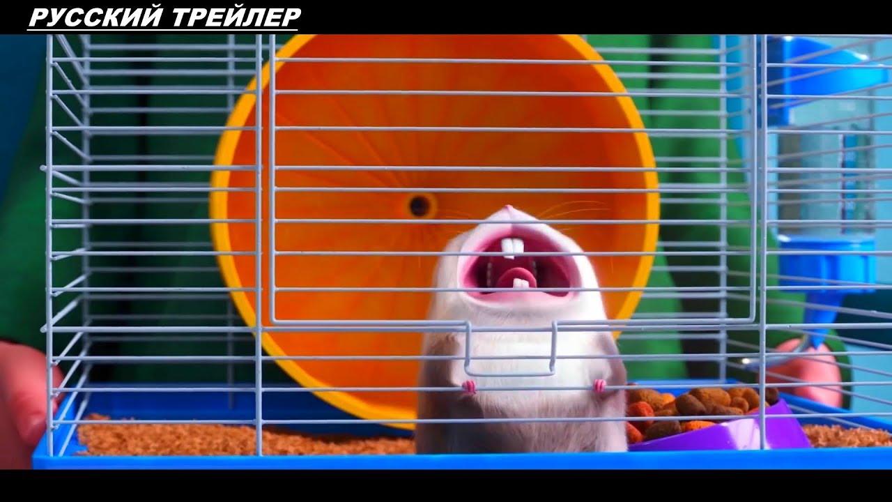 Тайная жизнь домашних животных 2 - Русский трейлер 2019 ✅