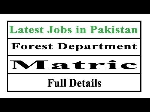 Jobs in Peshawar | Latest Peshawar Jobs 2018 | Govt Jobs Finder