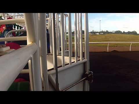 Carlton Mid Darwin Cup Carnival TV advert 2014