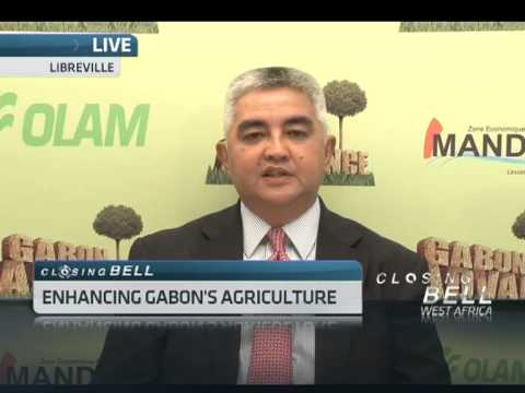 Enhancing Gabon's Agriculture with Ambono Janurianto