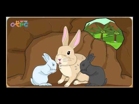 กระต่ายไม่ตื่นตูม - ภาษาไทย ป.3