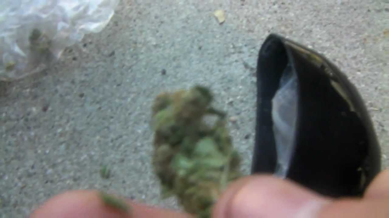How Much Does An Eighth Of Weed Weigh Green Rush Daily
