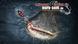Universelle Wallermontage Euro-som Catfish Rig.