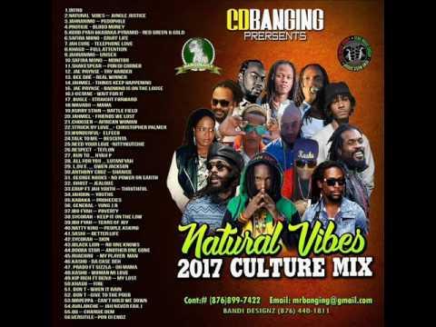 CD BANGING NATURAL VIBES 2017 MARCH REGGAE CULTURE MIXTAPE