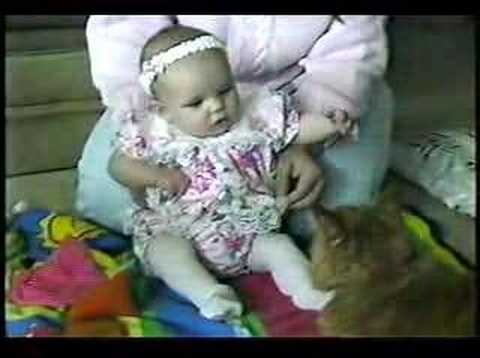 Baby Meets Kitty