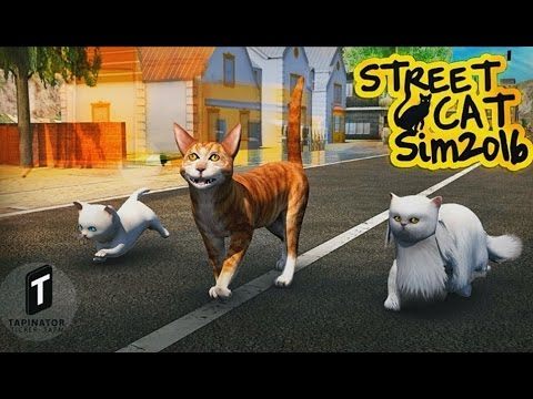 Street Cat Sim 2016 - Android Gameplay HD