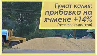 Как поднять урожайность зерновых, приазовье(Агрофирма