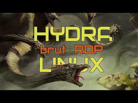 Брут дедиков в Linux | ProxyChains-NG + Hydra + Hydra | Брут SSH-тоннелей | Брутфорс RDP