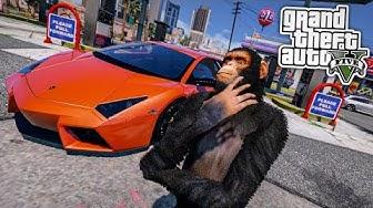 1 Tag als AFFE ÜBERSTEHEN in GTA 5 😂