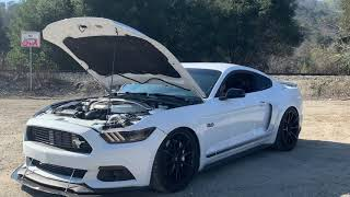 2019 Hellcat Charger VS. 2017 Procharged CSGT Mustang