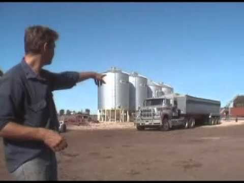 Cattle Food during a Drought - Farmer Dave