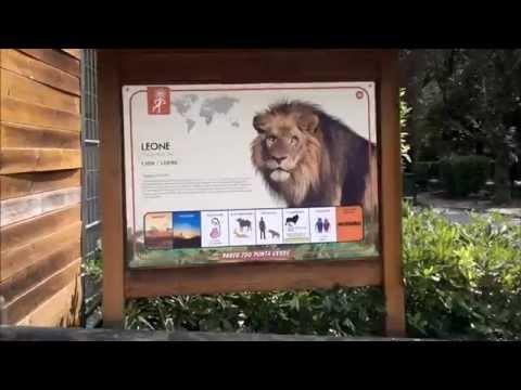 Italia Bibione Lignano wraz ze swoim ZOO 2014
