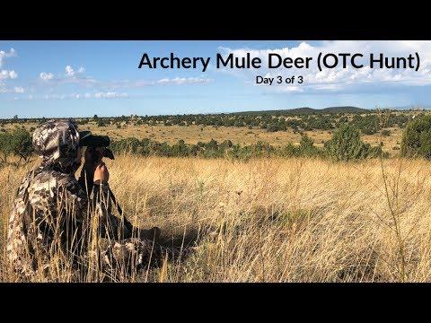 Mule Deer Hunting AZ (OTC TAG) Day 3 Of 3