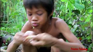 Primitive Technology - Eating delicious - Awesome cooking fish recipe on a rock