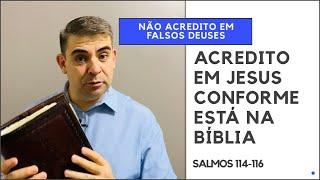 Não acredito em falsos deuses, creio em Jesus! - Sl 114-116