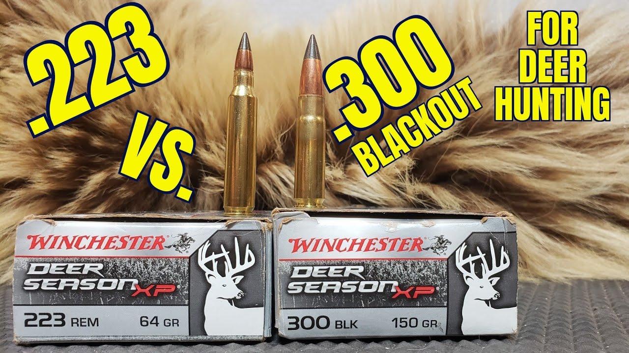 .223rem vs .300 Blackout for Deer Hunting