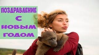 Регина Тодоренко (С Новым 2016 годом)