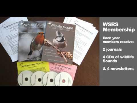 Wildlife Sound Recording Society