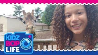 KIDZ BOP Life: Vlog # 34 - Ahnya's Zoo & Zip-lining Adventure
