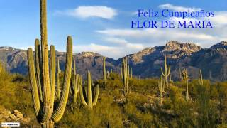 FlordeMaria   Nature & Naturaleza - Happy Birthday