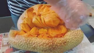 How to slice open malaysia jack fruit cempedak