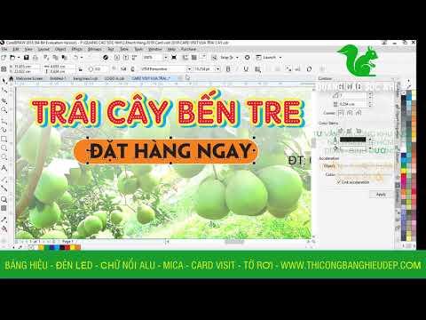 Hướng dẫn thiết kế Card visit cho vựa trái cây tại TP HCM