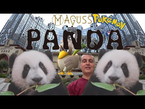 Macau - Panda Babies with Far Fetch'd, Maguss and more