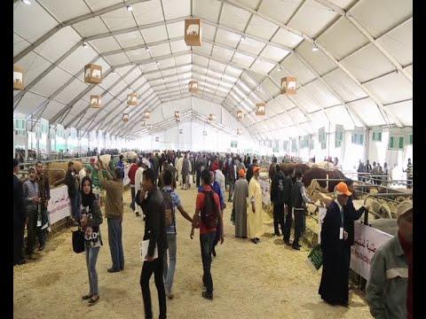 Maroc Meknès Salon Agriculture 2016