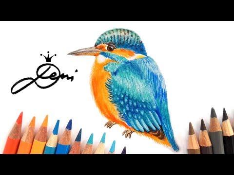 Eisvogel zeichnen lernen 🐥 Vogel malen 🐦 How to Draw a Kingfisher 🐟 Как се рисува Земеродно рибар