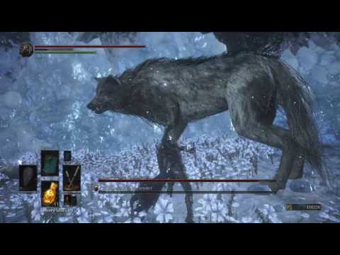 Dark Souls 3 - DLC boss fight Champion's grave-tender and his Greatwolf