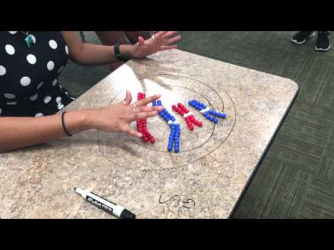 Mitosis demo with beads