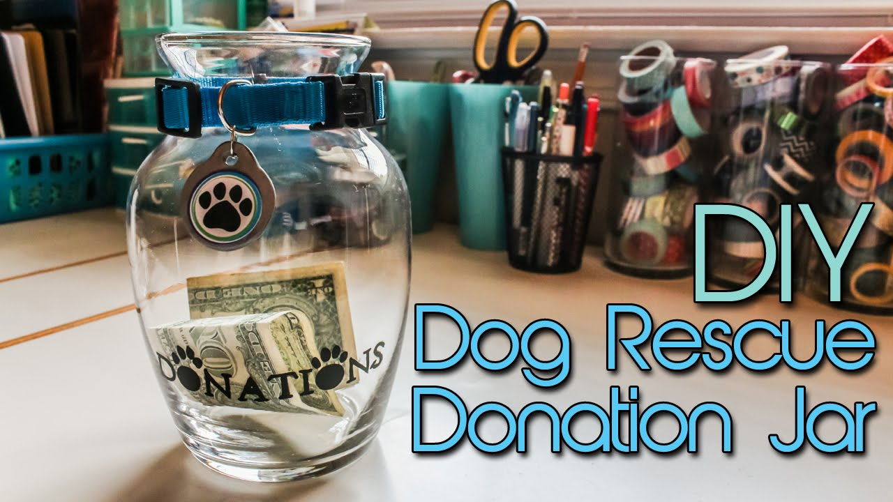 Dog Rescue Donation Jar Diy Arctic Spirit Rescue Intro Creation In Between Youtube