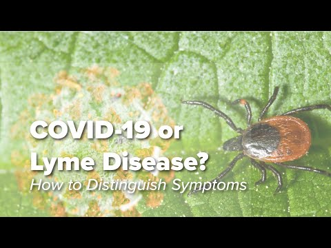 Early Indications of Lyme Disease