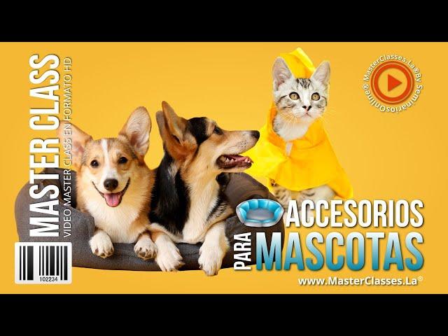 Accesorios para Mascotas - Crea tus propios diseños.
