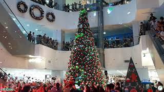 Funk Circuit™ Gold & SIlver Metallic Confetti for Fisher Mall Malabon Christmas Tree Lighting