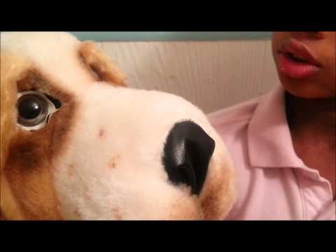VINTAGE Bogart Basset Hound Stuffed Animal (TOY REVIEW) by Animal Fair 1976