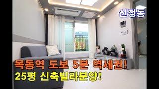 신정동신축빌라 25평 목동역 도보5분역세권-투자최고-전…