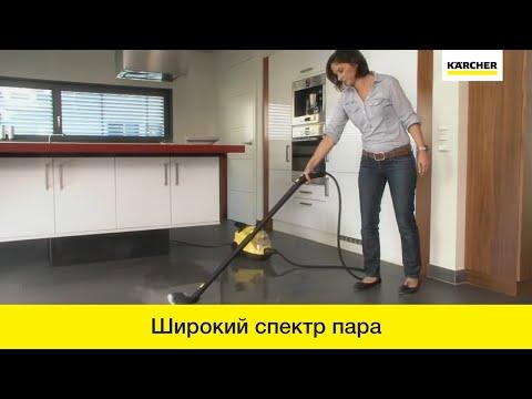 Пароочистители (русский язык)