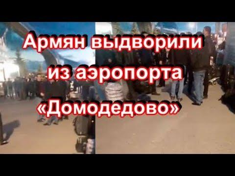 Не дождавшихся помощи от Армении армян выдворили из аэропорта «Домодедово»