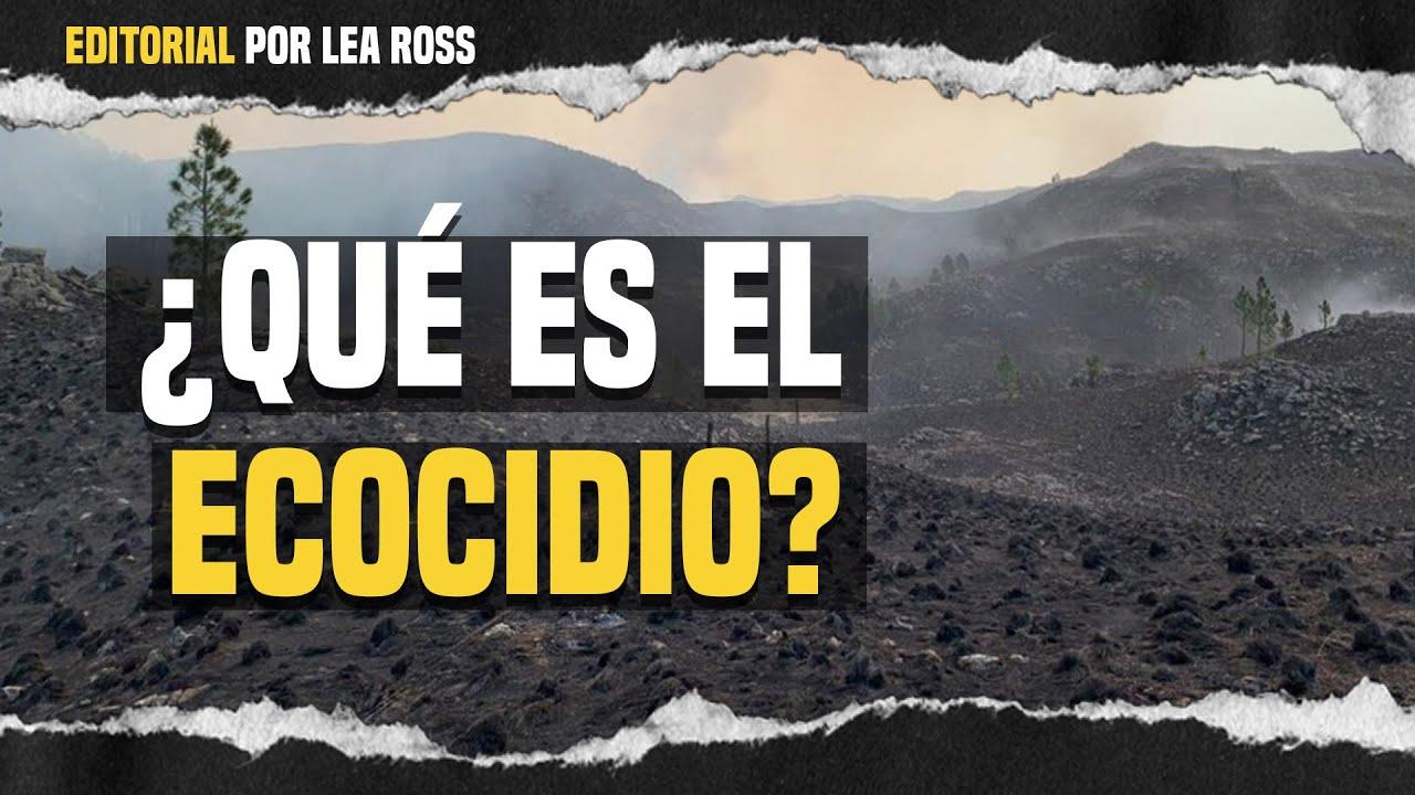 🌎¿Qué es el ecocidio?