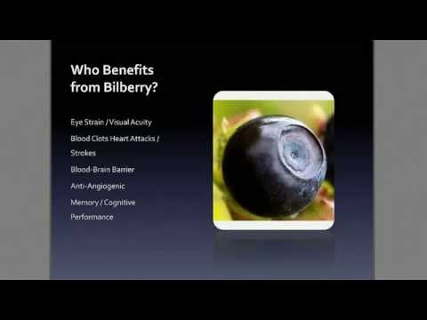 The Health Benefits Of Bilberry in Visi Products