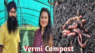    Vermicompost (Kechua Khad) Making Process  