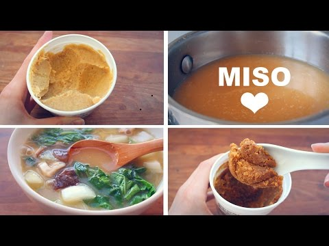 Become familiar with The Numerous Gut-Healthy Advantages of Miso