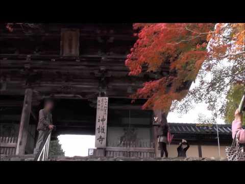 高雄 神護寺 楼門前