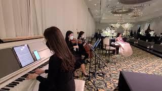 잠실롯데호텔 에메랄드홀 결혼식 웨딩연주 사랑의찬가 클래…