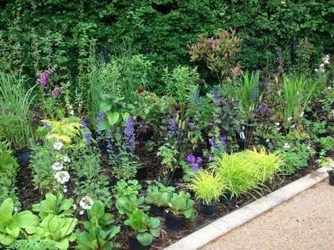Gut Gartenpflanzen Ideen