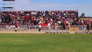 MDC Announces new  executive members thumbnail