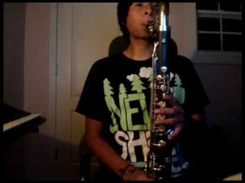 Muse- I Belong To You(Bass Clarinet Solo Cover)